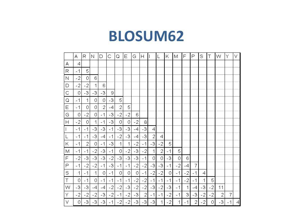 BLOSUM62