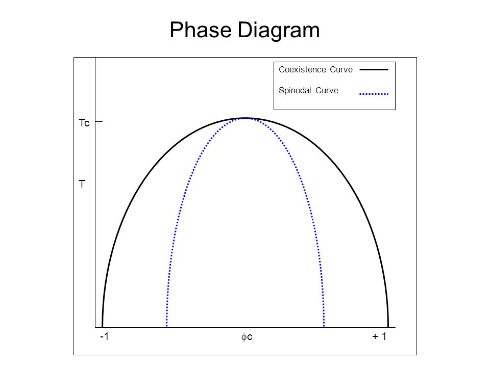 Phase Diagram -1  c + 1 T Coexistence Curve Spinodal Curve Tc