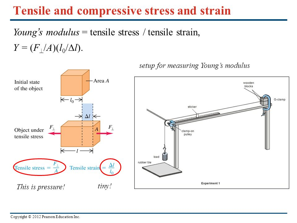 Copyright © 2012 Pearson Education Inc. Tensile and compressive stress and strain Young's modulus = tensile stress / tensile strain, Y = (F  /A)(l 0