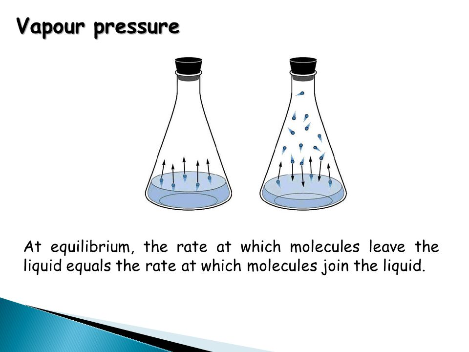 Vapour pressure At equilibrium, the rate at which molecules leave the liquid equals the rate at which molecules join the liquid.