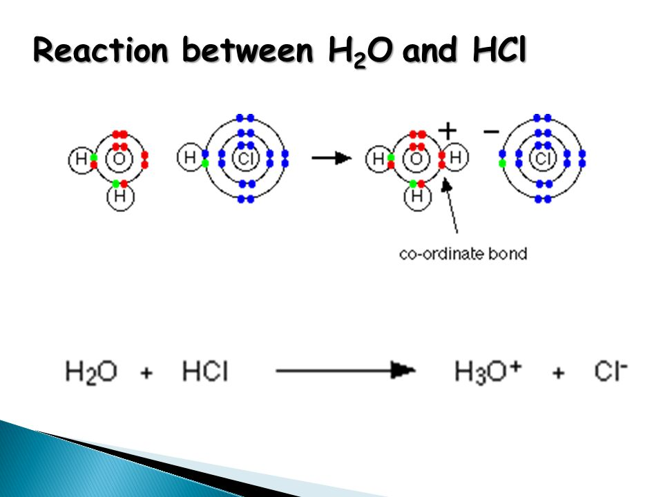 Reaction between H 2 O and HCl