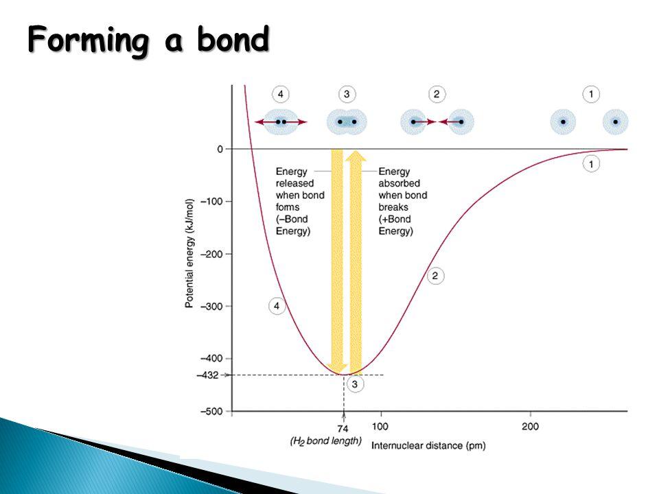 180 o Linear BeCl 2 Starter Activity