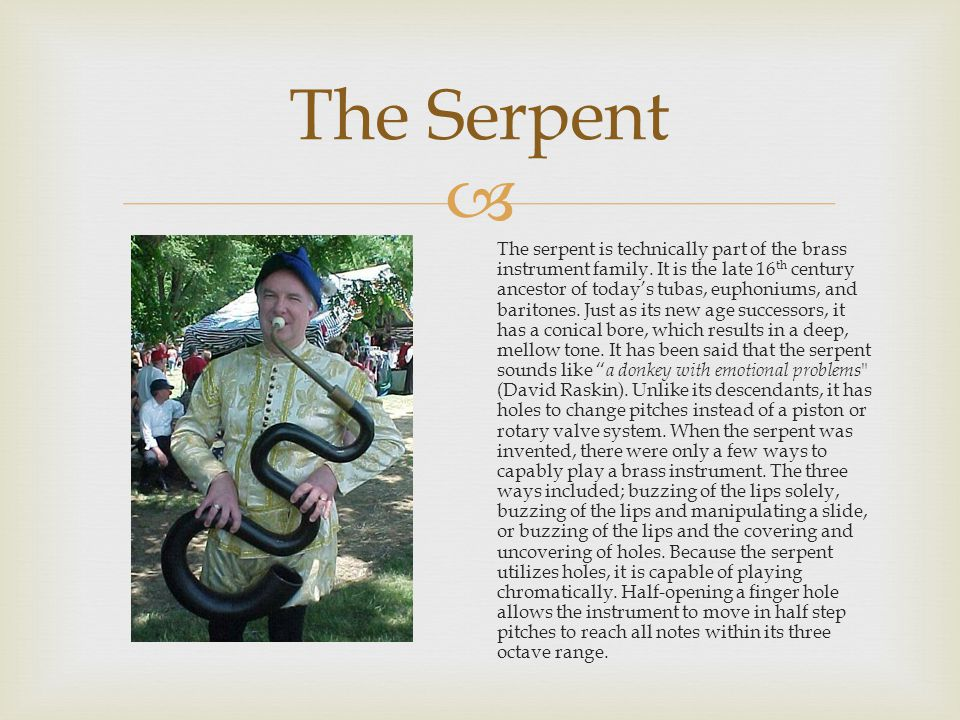  The Serpent The serpent is technically part of the brass instrument family.