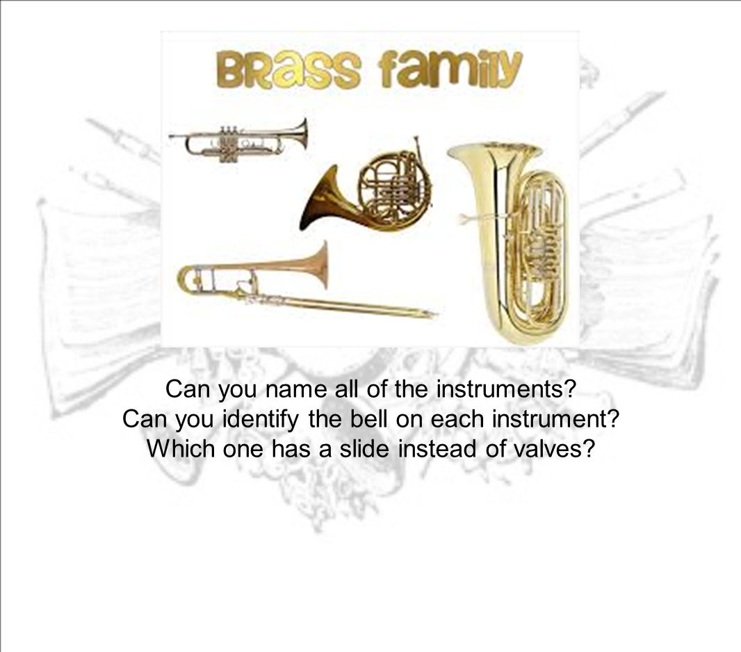 Can you name all of the instruments? Can you identify the bell on each instrument? Which one has a slide instead of valves?