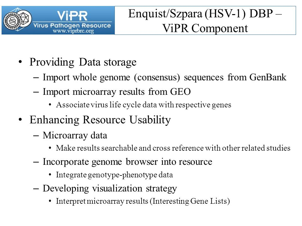 www.viprbrc.org Enquist/Szpara (HSV-1) DBP – ViPR Component Providing Data storage – Import whole genome (consensus) sequences from GenBank – Import microarray results from GEO Associate virus life cycle data with respective genes Enhancing Resource Usability – Microarray data Make results searchable and cross reference with other related studies – Incorporate genome browser into resource Integrate genotype-phenotype data – Developing visualization strategy Interpret microarray results (Interesting Gene Lists)