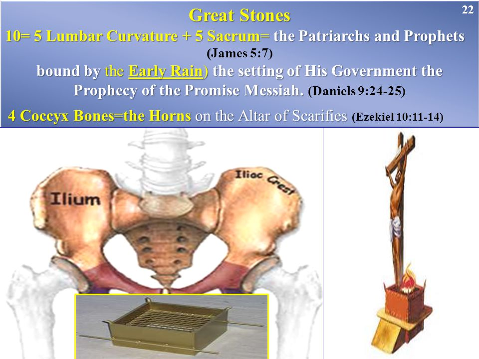 Great Stones 10= 5 Lumbar Curvature + 5 Sacrum= the Patriarchs and Prophets ( (James 5:7) bound by the Early Rain) the setting of His Government the P