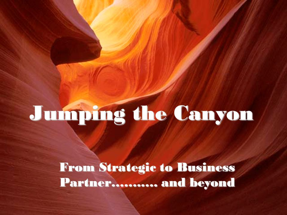 Jumping the Canyon From Strategic to Business Partner…….…. and beyond