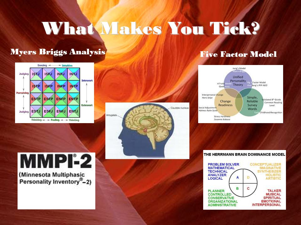 What Makes You Tick Myers Briggs Analysis Five Factor Model