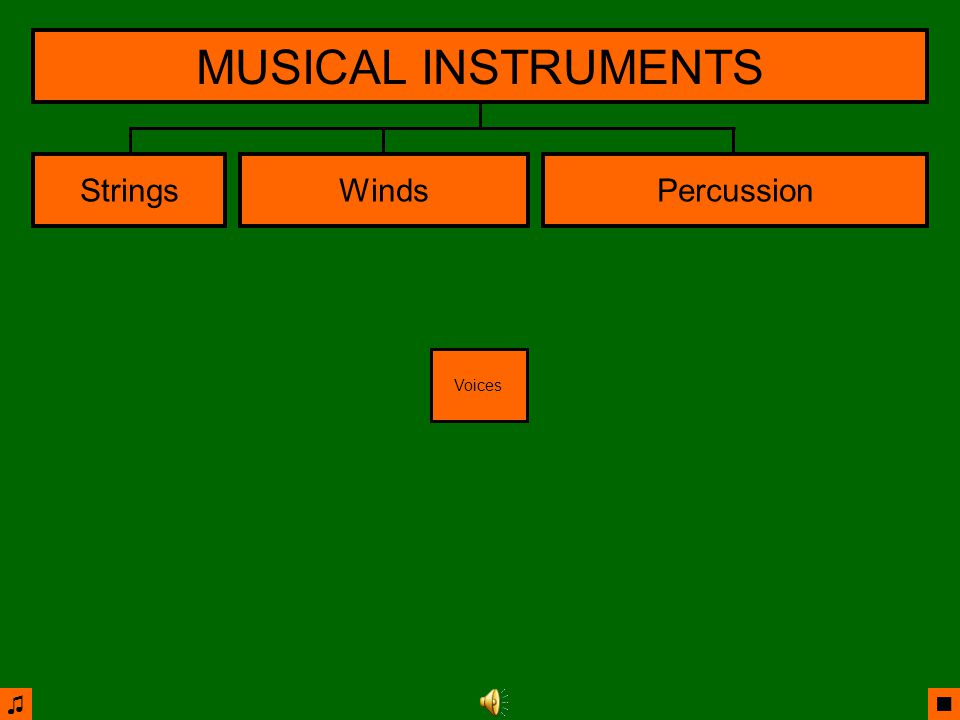 ♫ ■ StringsWindsPercussion MUSICAL INSTRUMENTS Brass