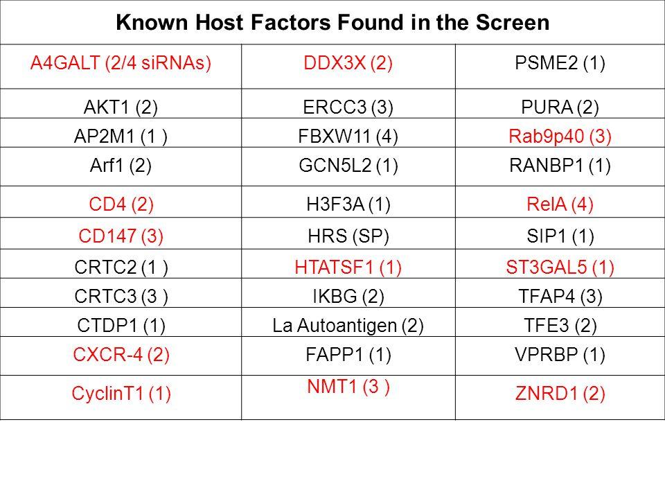 Known Host Factors Found in the Screen A4GALT (2/4 siRNAs)DDX3X (2)PSME2 (1) AKT1 (2)ERCC3 (3)PURA (2) AP2M1 (1 )FBXW11 (4)Rab9p40 (3) Arf1 (2)GCN5L2 (1)RANBP1 (1) CD4 (2)H3F3A (1)RelA (4) CD147 (3)HRS (SP)SIP1 (1) CRTC2 (1 )HTATSF1 (1)ST3GAL5 (1) CRTC3 (3 )IKBG (2)TFAP4 (3) CTDP1 (1)La Autoantigen (2)TFE3 (2) CXCR-4 (2)FAPP1 (1)VPRBP (1) CyclinT1 (1) NMT1 (3 ) ZNRD1 (2)