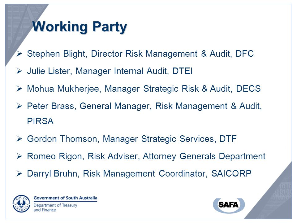 Working Party  Stephen Blight, Director Risk Management & Audit, DFC  Julie Lister, Manager Internal Audit, DTEI  Mohua Mukherjee, Manager Strategi