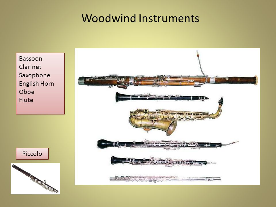 Woodwind Family Woodwinds are played by blowing through or into a hole.
