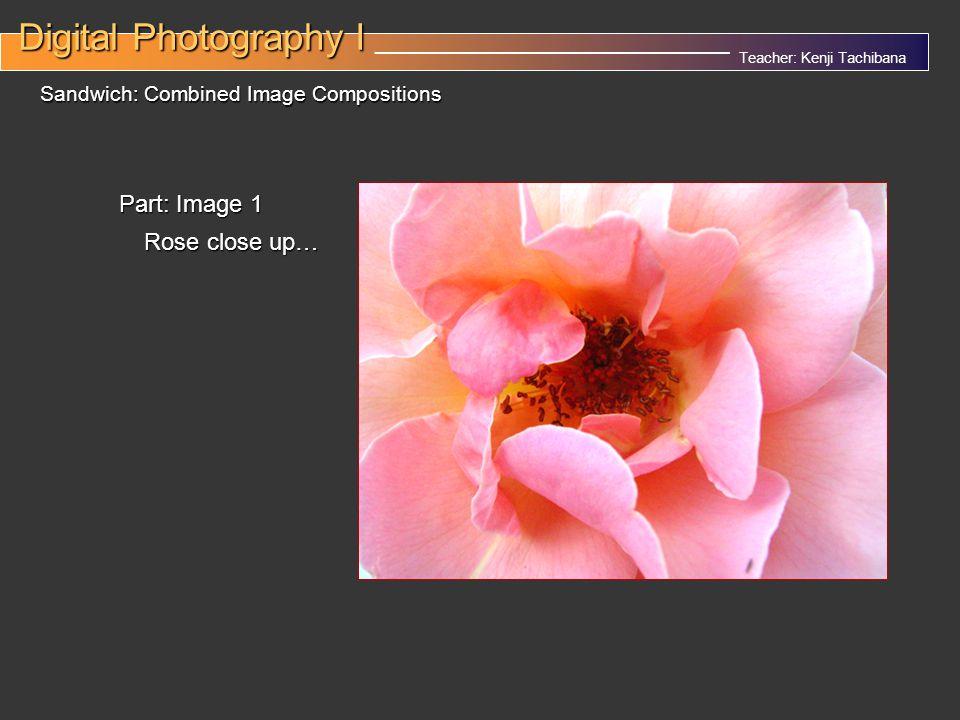 Teacher: Kenji Tachibana Digital Photography I Digital Photography I __________________________________ Sandwich: Combined Image Compositions Part: Image 1 Rose close up…