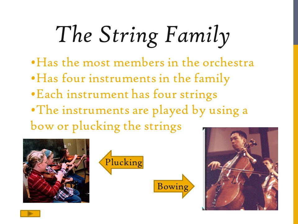 Has the most members in the orchestra Has four instruments in the family Each instrument has four strings The instruments are played by using a bow or plucking the strings The String Family Plucking Bowing