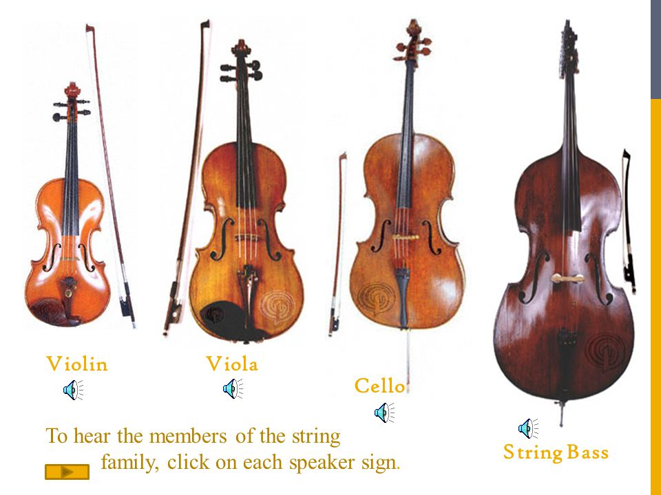ViolinViola Cello String Bass To hear the members of the string family, click on each speaker sign.