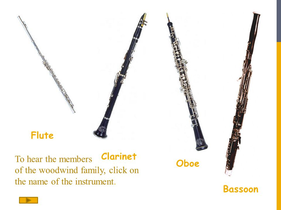 Flute Clarinet Oboe Bassoon To hear the members of the woodwind family, click on the name of the instrument.