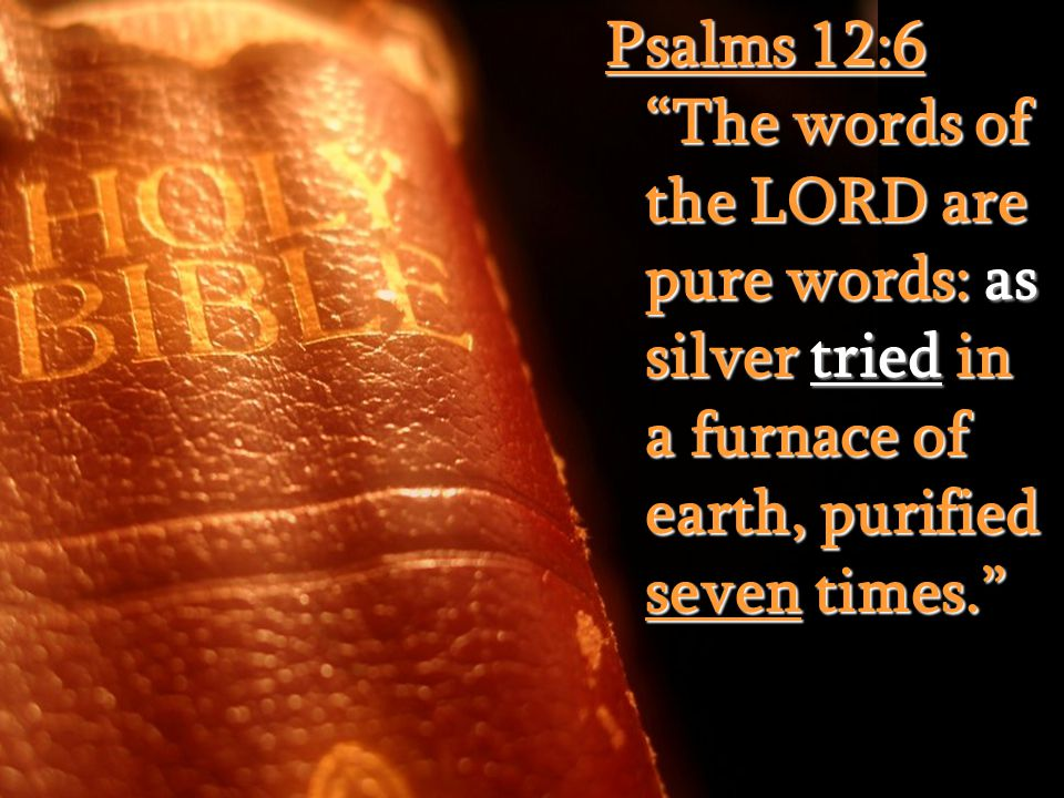 """Psalms 12:6 """"The words of the LORD are pure words: as silver tried in a furnace of earth, purified seven times."""""""