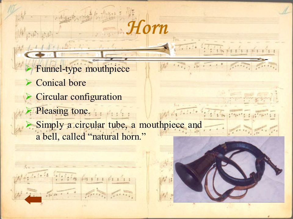 Horn  Funnel-type mouthpiece  Conical bore  Circular configuration  Pleasing tone.