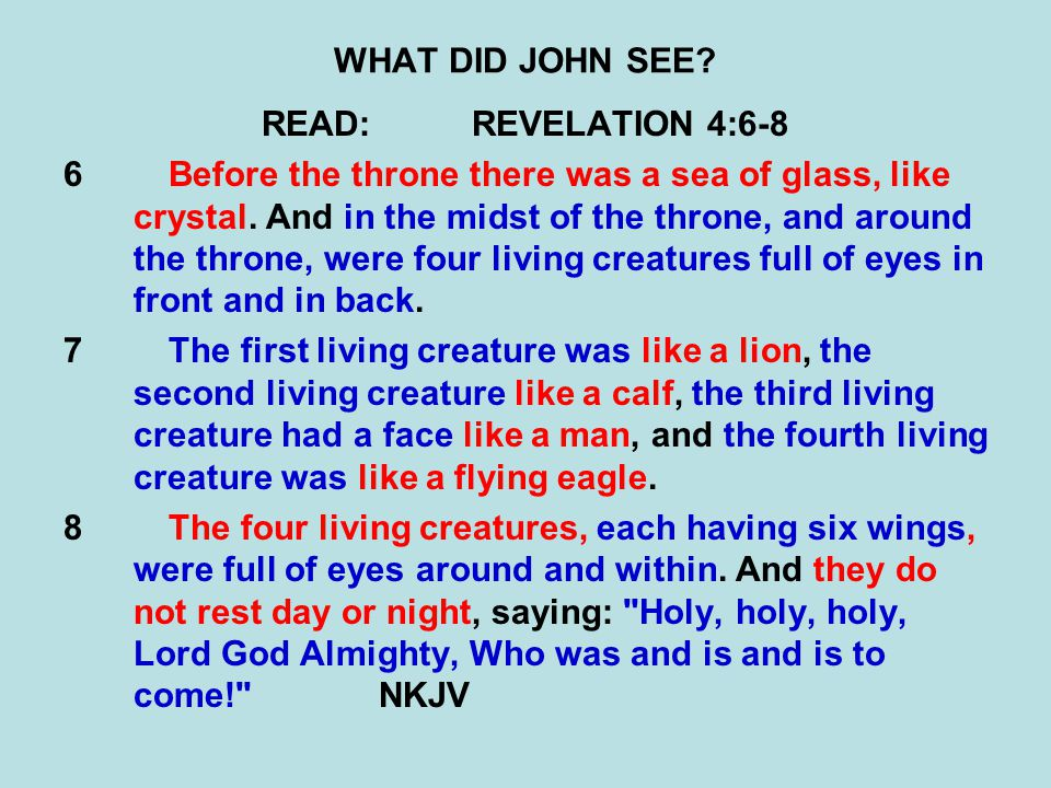 WHAT DID JOHN SEE.