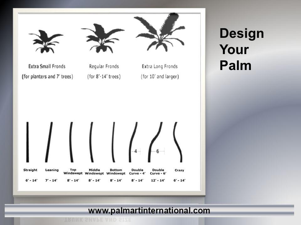 Design Your Palm www.palmartinternational.com