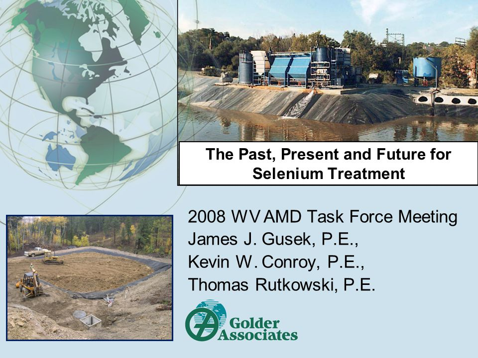 The Past, Present and Future for Selenium Treatment 2008 WV AMD Task Force Meeting James J.