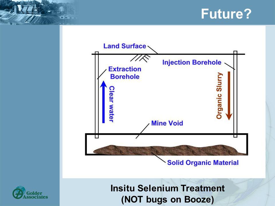 Future? Insitu Selenium Treatment (NOT bugs on Booze)