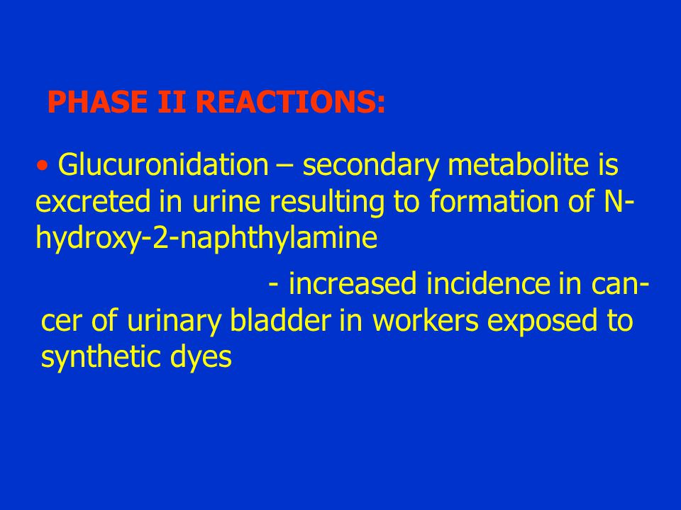 PHASE II REACTIONS: Glucuronidation – secondary metabolite is excreted in urine resulting to formation of N- hydroxy-2-naphthylamine - increased incid