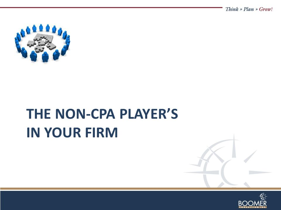THE NON-CPA PLAYER'S IN YOUR FIRM