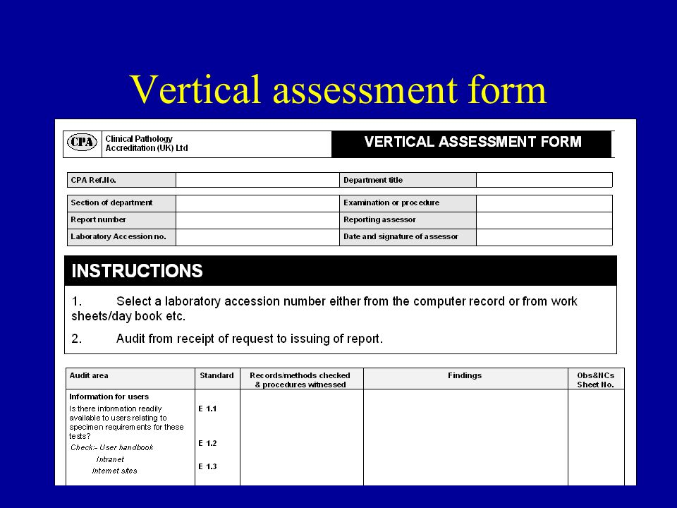 42 Vertical assessment form