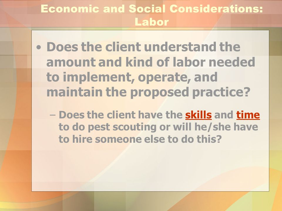 Economic and Social Considerations: Labor Does the client understand the amount and kind of labor needed to implement, operate, and maintain the propo