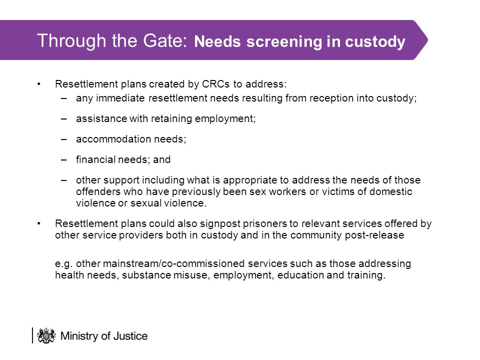 Through the Gate: Needs screening in custody Resettlement plans created by CRCs to address: –any immediate resettlement needs resulting from reception into custody; –assistance with retaining employment; –accommodation needs; –financial needs; and –other support including what is appropriate to address the needs of those offenders who have previously been sex workers or victims of domestic violence or sexual violence.