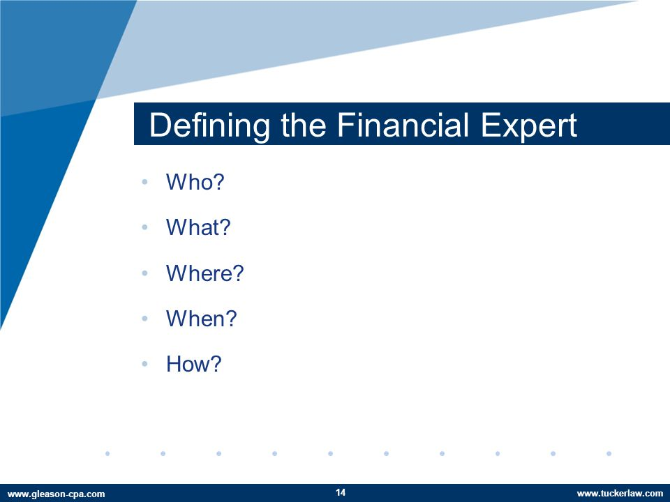 www.tuckerlaw.com www.gleason-cpa.com Defining the Financial Expert Who What Where When How 14