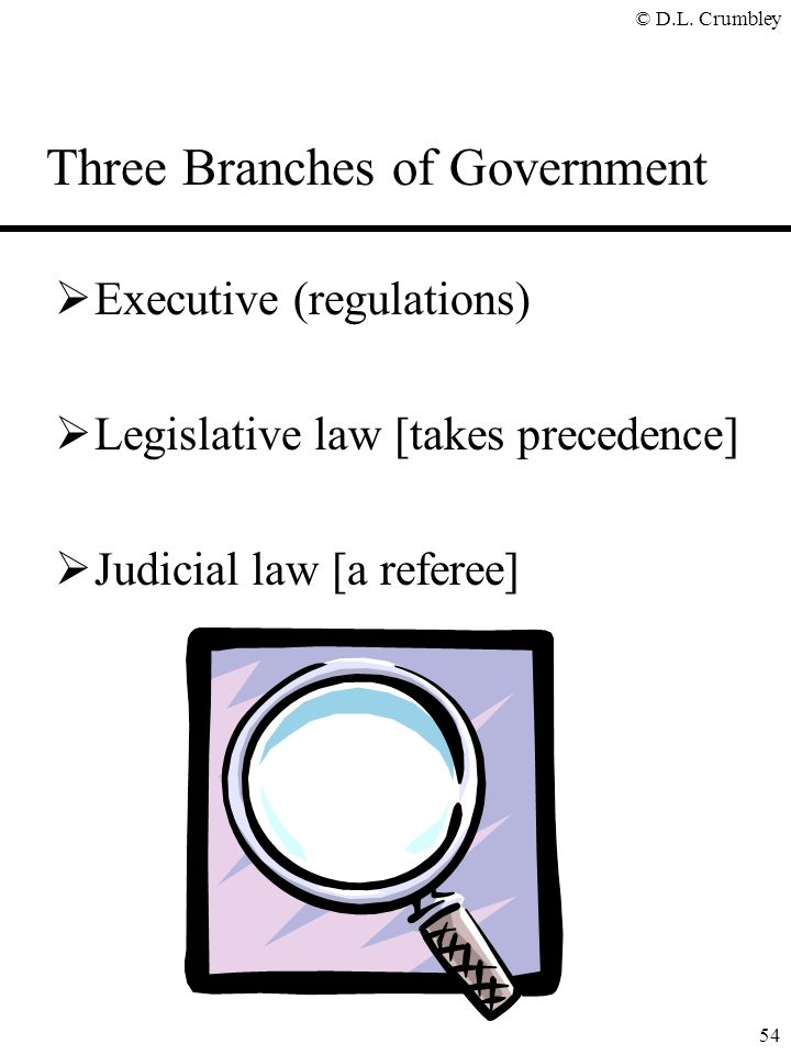 © D.L. Crumbley 54 Three Branches of Government  Executive (regulations)  Legislative law [takes precedence]  Judicial law [a referee]