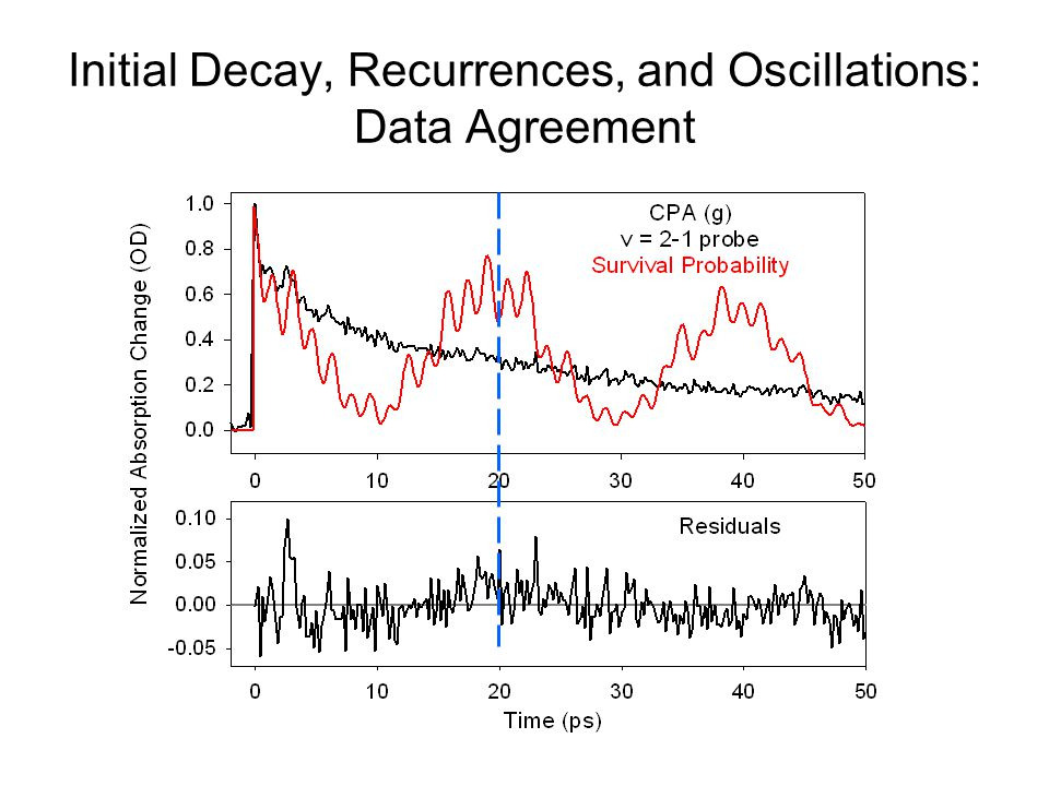 Initial Decay, Recurrences, and Oscillations: Data Agreement