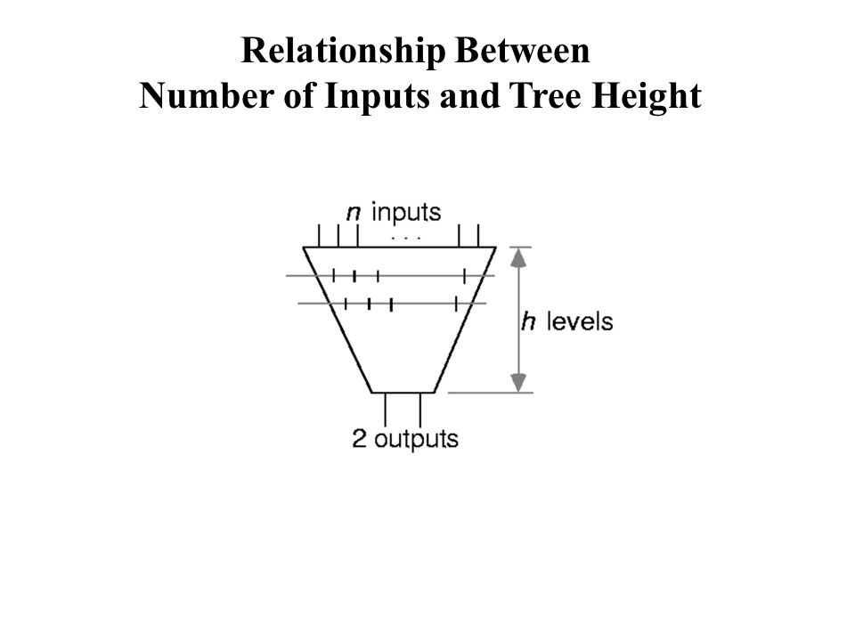 Relationship Between Number of Inputs and Tree Height