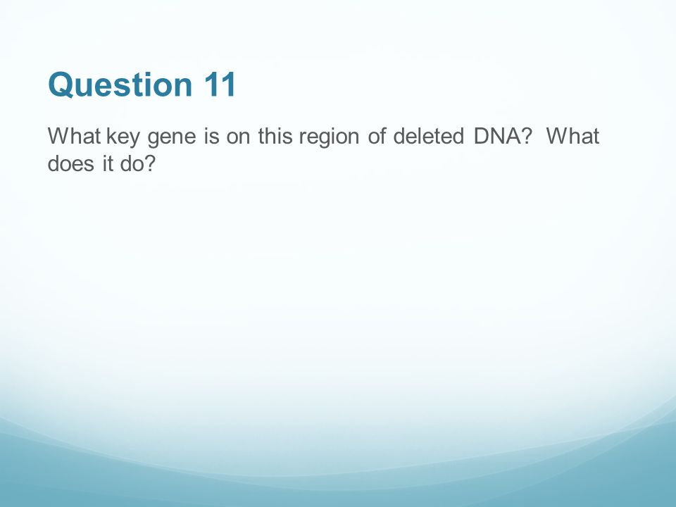 Question 11 What key gene is on this region of deleted DNA What does it do