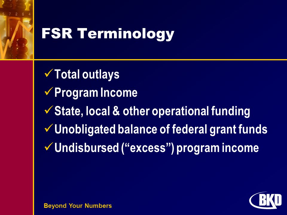 Beyond Your Numbers FSR Terminology Total outlays Program Income State, local & other operational funding Unobligated balance of federal grant funds U