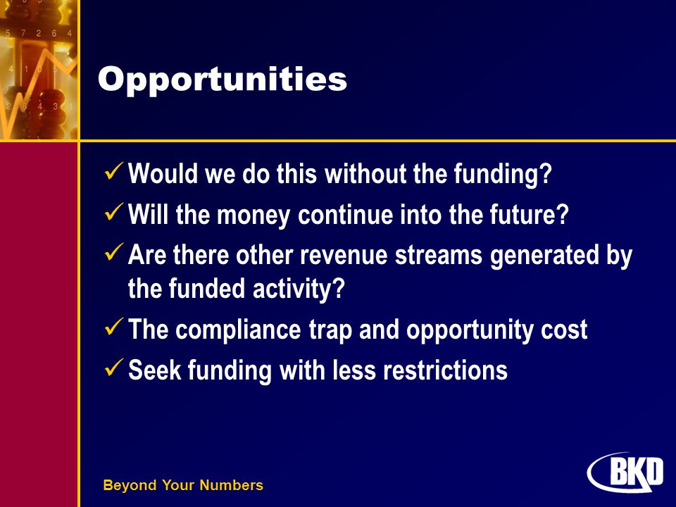 Beyond Your Numbers Opportunities Would we do this without the funding? Will the money continue into the future? Are there other revenue streams gener