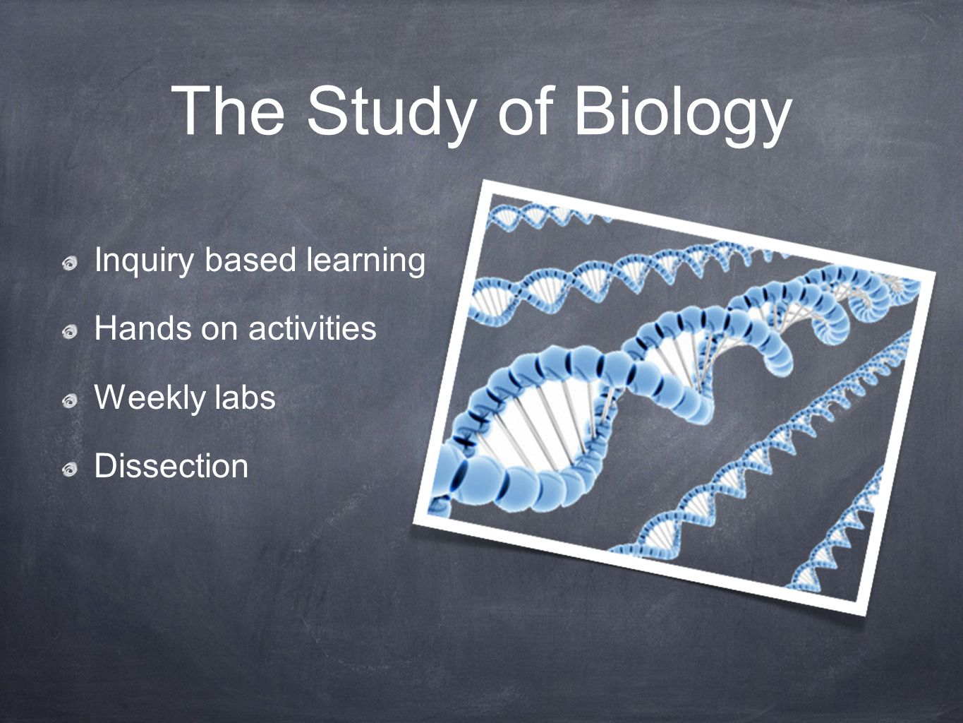 The Study of Biology Inquiry based learning Hands on activities Weekly labs Dissection