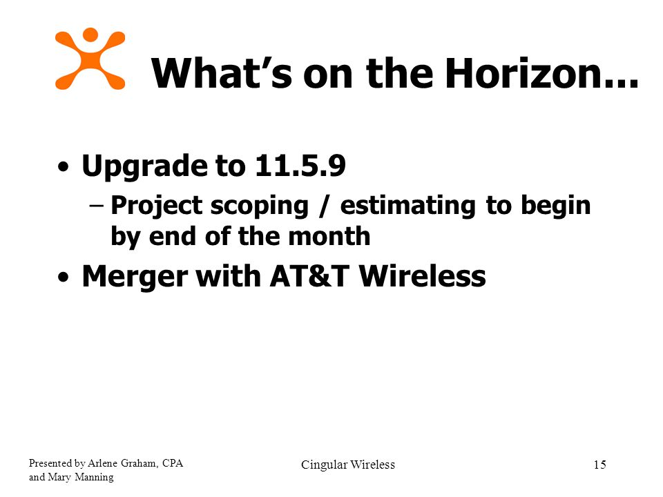 Presented by Arlene Graham, CPA and Mary Manning Cingular Wireless15 What's on the Horizon...