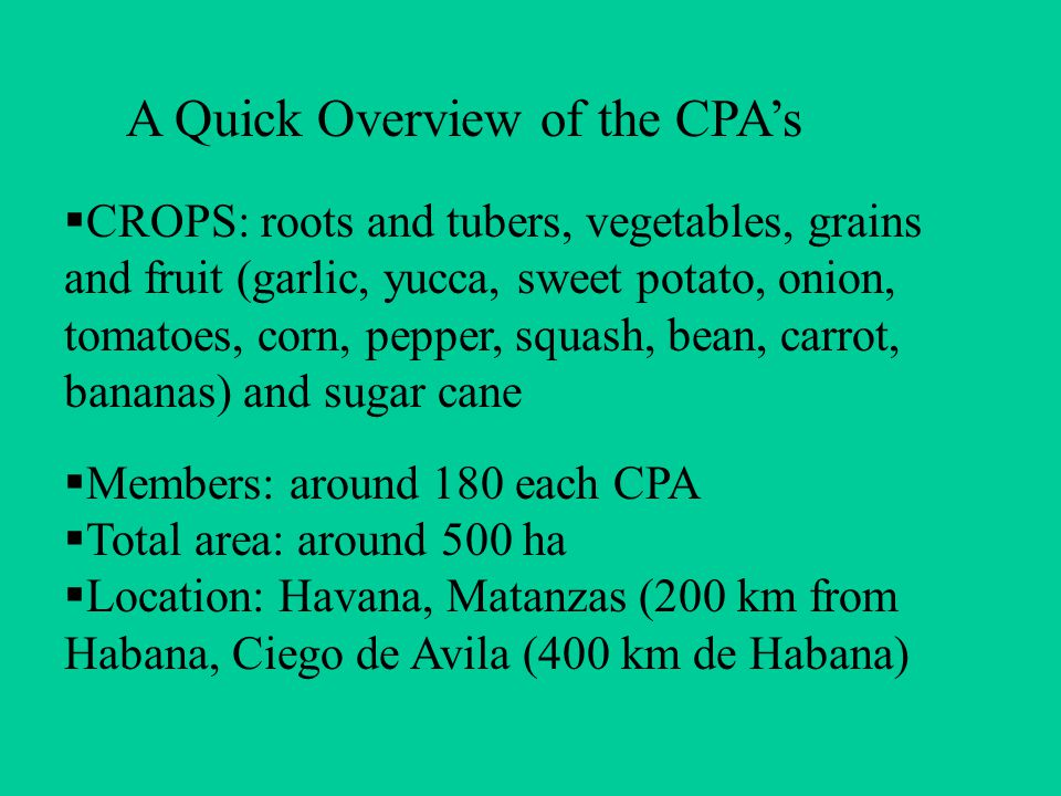  CROPS: roots and tubers, vegetables, grains and fruit (garlic, yucca, sweet potato, onion, tomatoes, corn, pepper, squash, bean, carrot, bananas) and sugar cane  Members: around 180 each CPA  Total area: around 500 ha  Location: Havana, Matanzas (200 km from Habana, Ciego de Avila (400 km de Habana) A Quick Overview of the CPA's