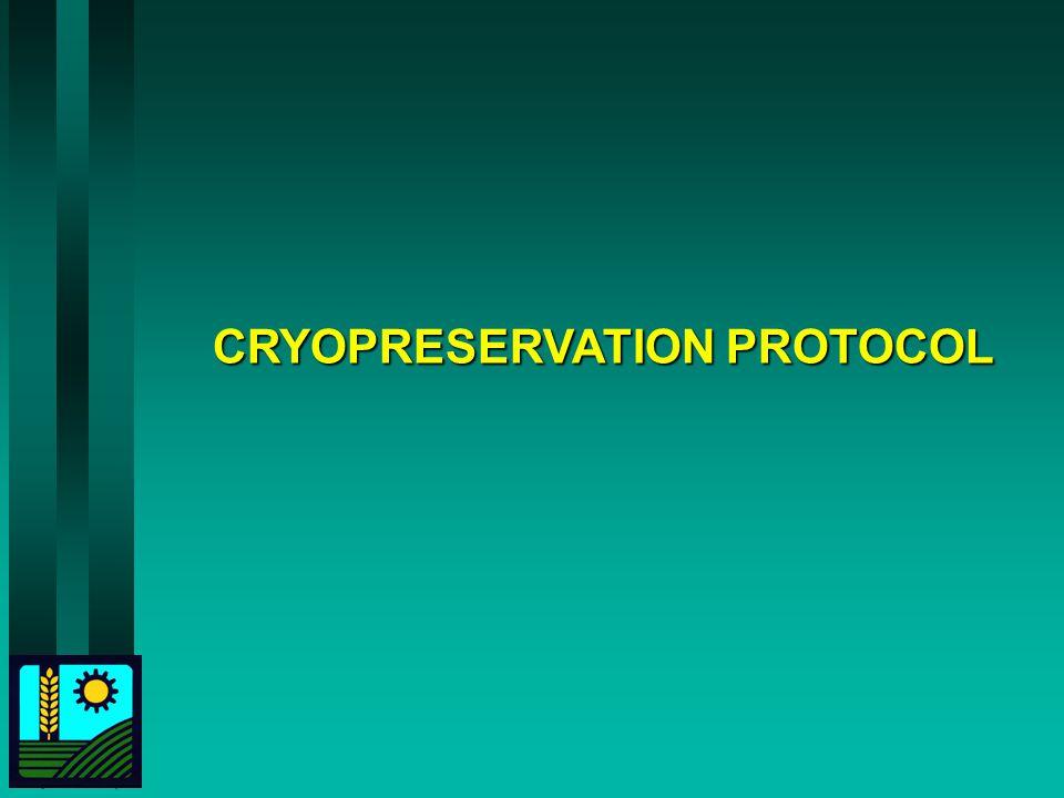 CRYOPRESERVATION PROTOCOL
