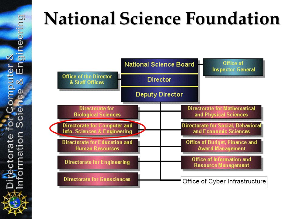 National Science Foundation Office of Cyber Infrastructure