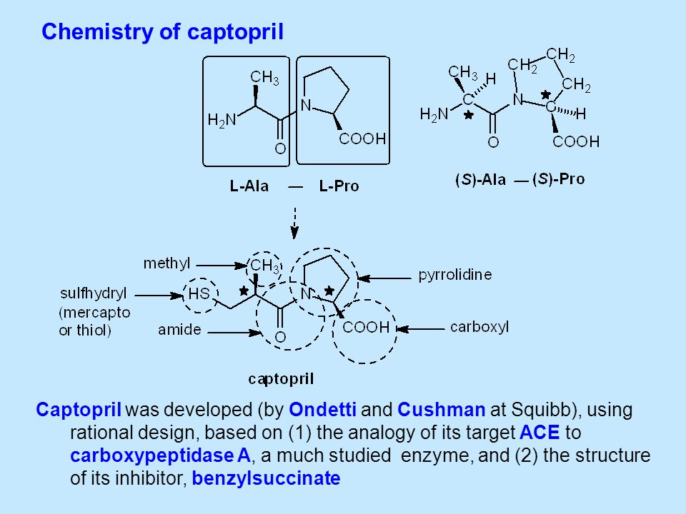 Chemistry of captopril Captopril was developed (by Ondetti and Cushman at Squibb), using rational design, based on (1) the analogy of its target ACE to carboxypeptidase A, a much studied enzyme, and (2) the structure of its inhibitor, benzylsuccinate