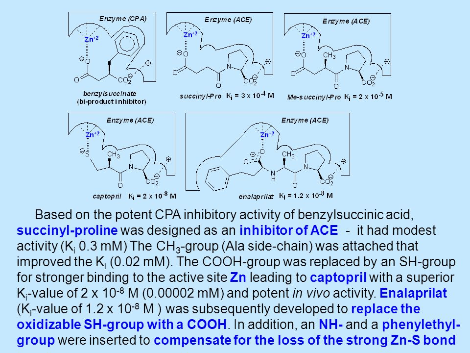 Based on the potent CPA inhibitory activity of benzylsuccinic acid, succinyl-proline was designed as an inhibitor of ACE - it had modest activity (K i 0.3 mM) The CH 3 -group (Ala side-chain) was attached that improved the K i (0.02 mM).