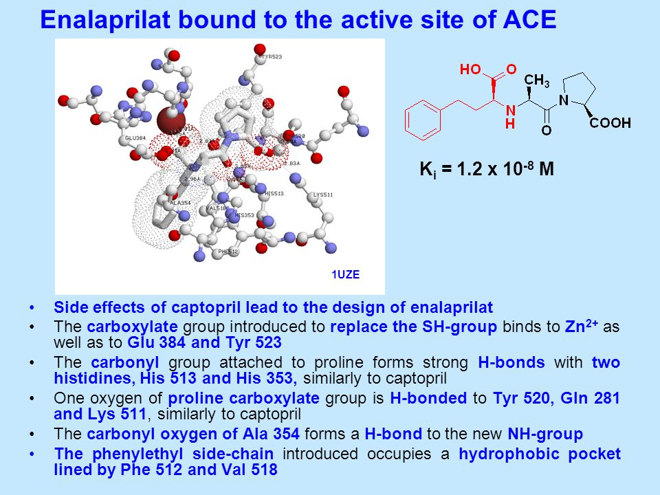 Side effects of captopril lead to the design of enalaprilat The carboxylate group introduced to replace the SH-group binds to Zn 2+ as well as to Glu