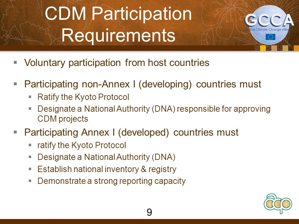 DNA Functions  To issue Letter of Approval for a CDM project activity stating that the participation is voluntary  To confirm that the project activity contributes to the sustainable development objectives of the host country  To provide a point of contact concerning national CDM policies & procedures  To facilitate the development of a portfolio of CDM projects and promoting investment  To act as a one stop shop for CDM in the Host Country 10