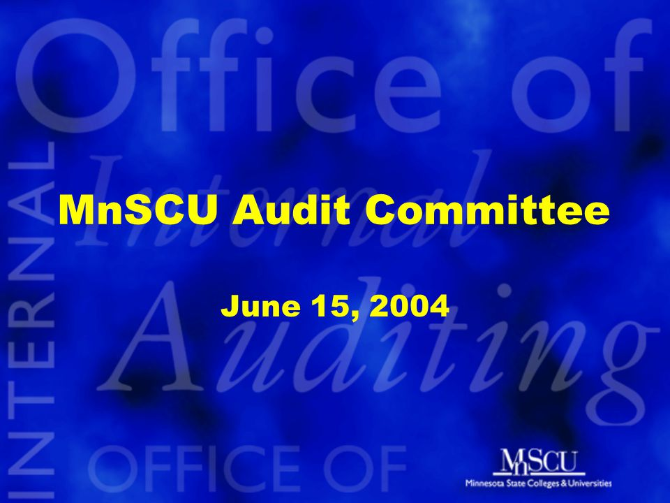 MnSCU Audit Committee June 15, 2004