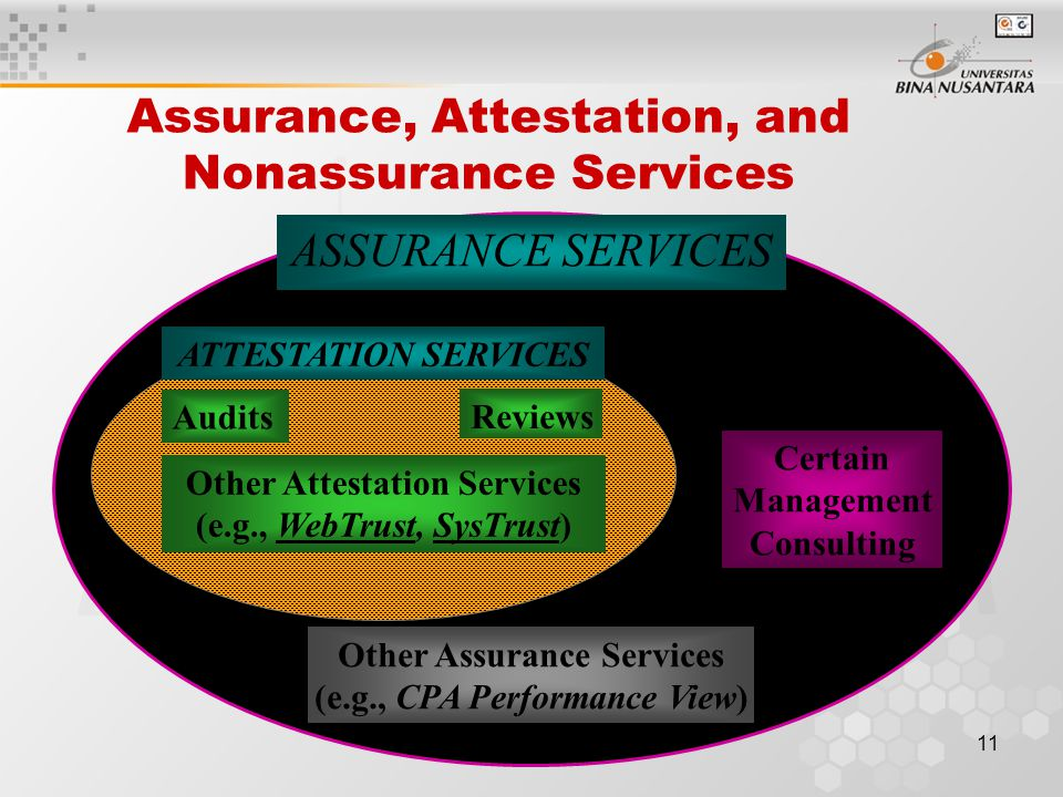 10 Assurance Services on Other Types of Information CPA Performance View CPA ElderCare Services CPA Risk Advisory Services
