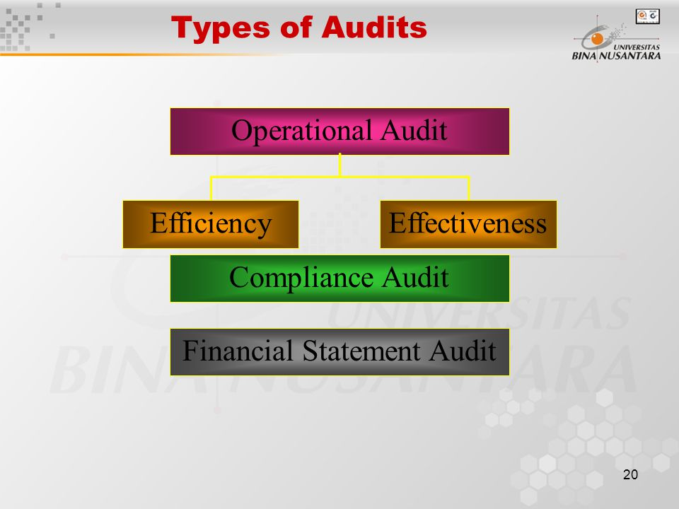 19 Reporting The final stage in the auditing process is preparing the Audit Report which is the communication of the auditor's findings to users.